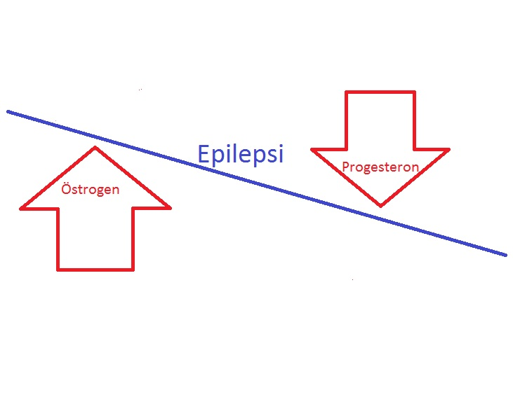 Epilepsi och hormonerna som gasar och bromsar