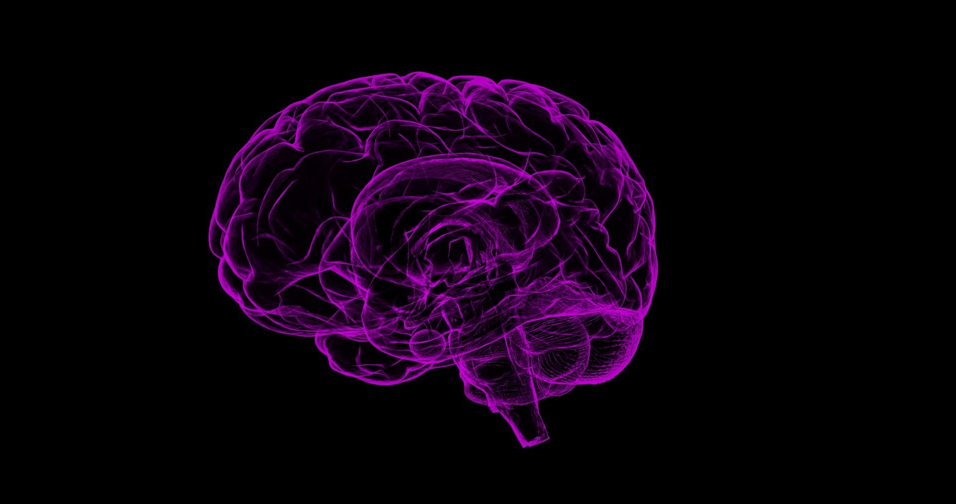 Kolin kan skydda hjärnan hos barn med npf och epilepsi