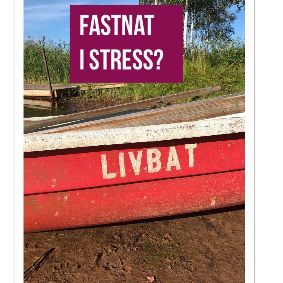 Både barn och vuxna fastnar i konstant stress!