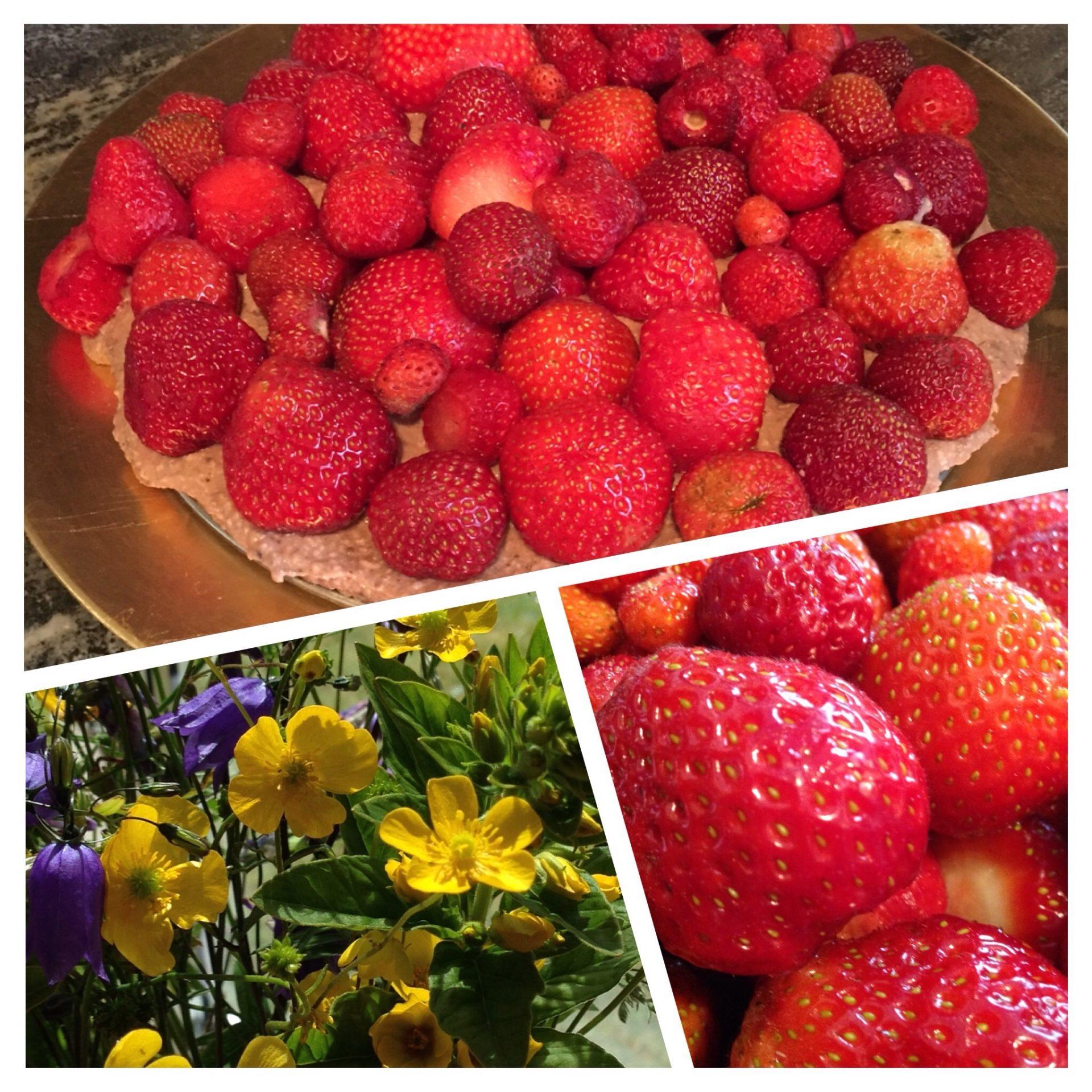 Rawfood jordgubbstårta för alla åldrar